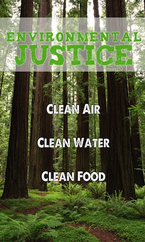 Environment justice